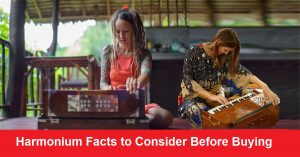 Harmonium Facts to Consider Before Buying